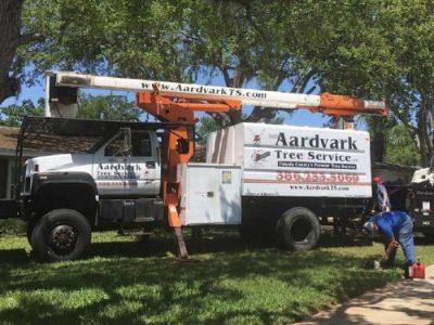 tree service deland florida